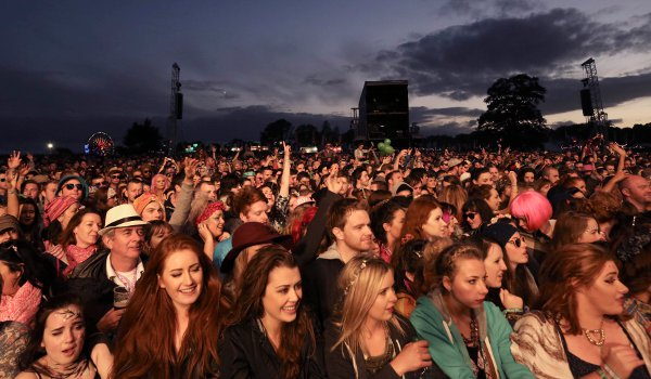 electric picnic-n
