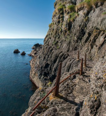 The Gobbins path before its renovation - it will reopen this summer