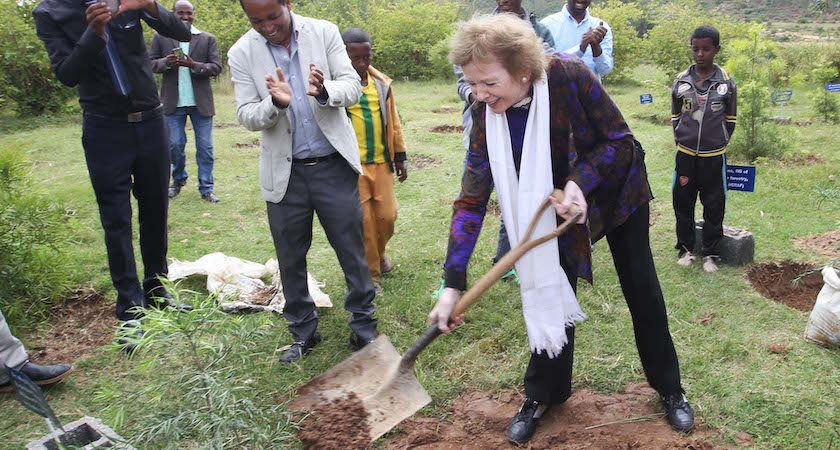 67/2016. The UN Special Envoy for El Nino and Climate Mary Robinson visiting Ethiopia where she visited the Irish Aid program, the Integrated WatershedManagement Programme )where she planted a tree), the Concern Worldwide Ethiopia's CMAM(Community Management of Acute Malnutrition) programme and the Women's Cooperative Grain Bank programme. Our photograph shows Mary Robinson planting a tree in her honour in Gergera Farmers Rural Rescource Centre. (With Compliments) Photograph Liam Burke/Press 22