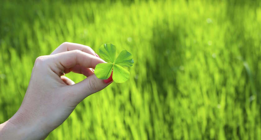 A woman holding a four leaf clover. It's her lucky day!