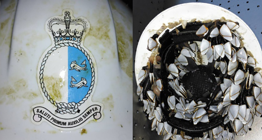 The Canadian Coast Guard helmet was found encrusted in barnacles [Picture: Facebook/WaterfordInYourPocket]