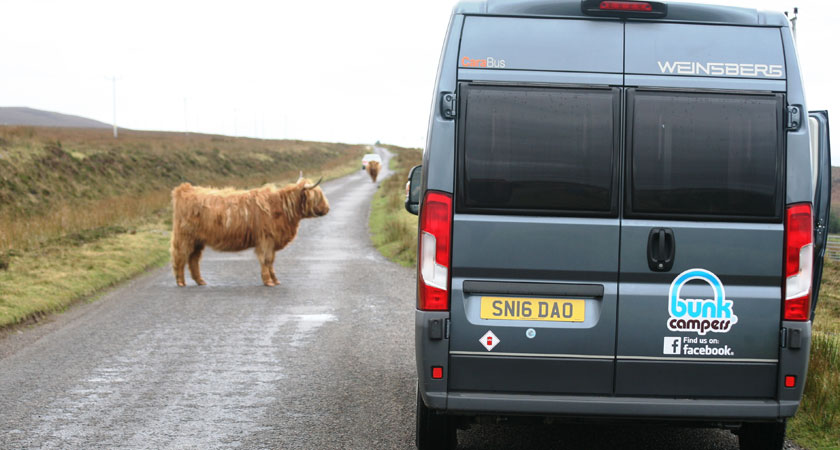 You can opt for a campervan over a motorbike, just be wary of bovine traffic hazards
