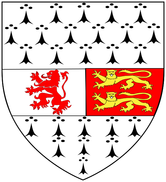 All 32 Irish County Coat Of Arms What They Mean And Where They Come