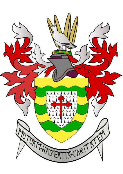 all 32 irish county coat of arms what they mean and where