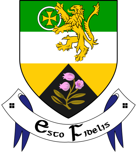 All 32 Irish county coat of arms, what they mean and where