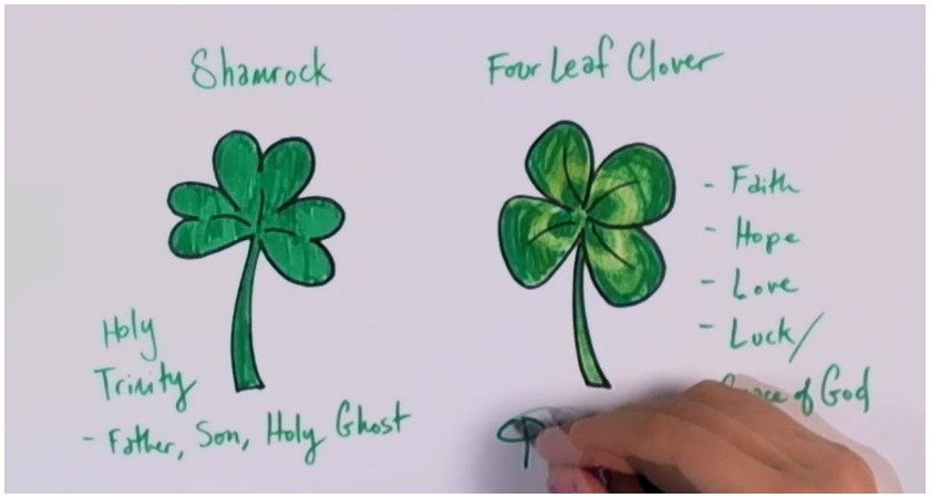 12 Things You Probably Never Knew About The Irish Shamrock The