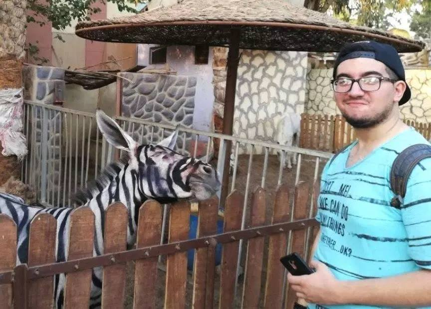 Zoo paints stripes on donkey to make visitors think it's a zebra