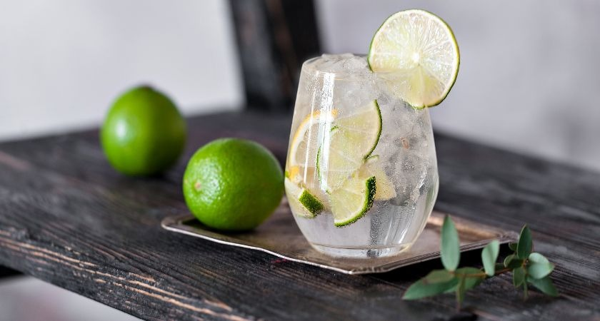 Dream job advert offering chance to travel the world drinking gin