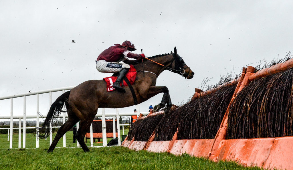 Grand National hero Tiger Roll will return at Navan this weekend