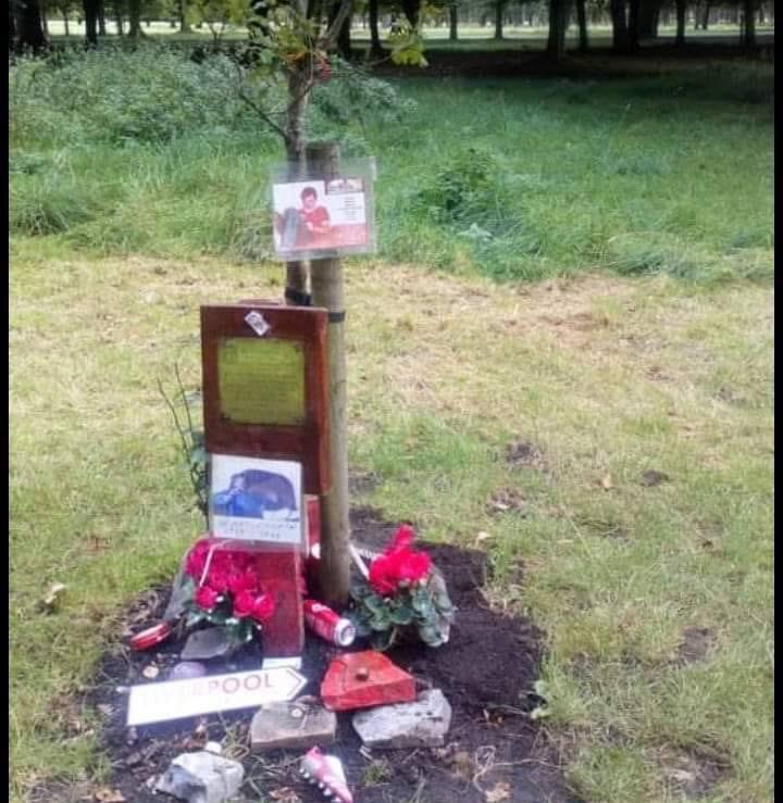 Tree planted in Phoenix Park to memorialise Hillsborough victims vandalised.